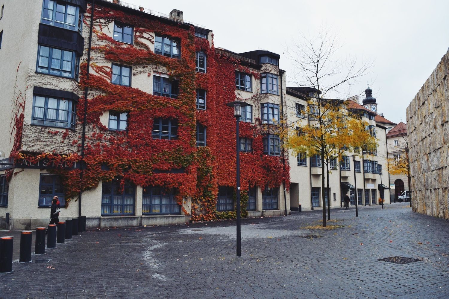 Ivy-covered Buildings in Munich