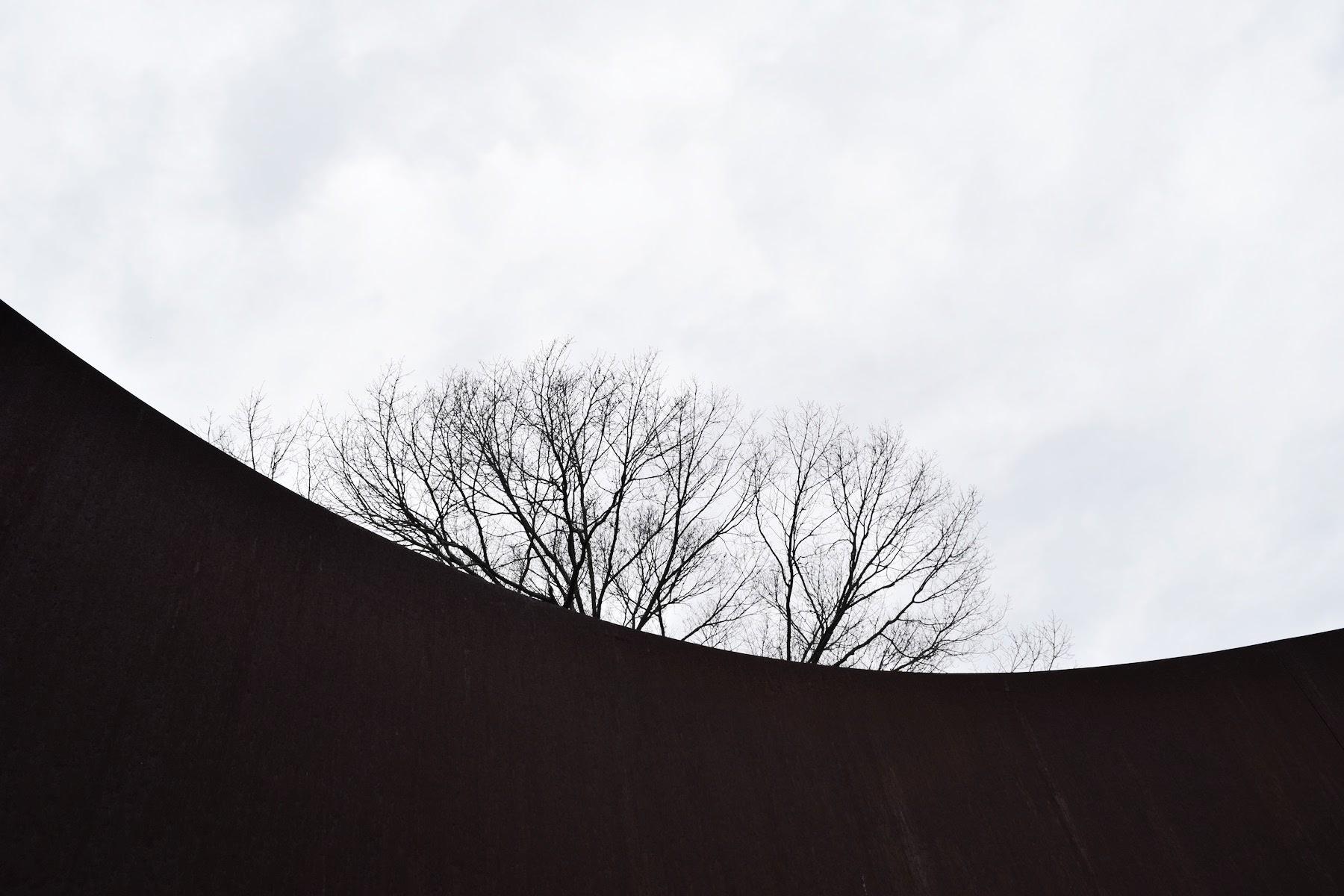 Richard Serra Sylvester