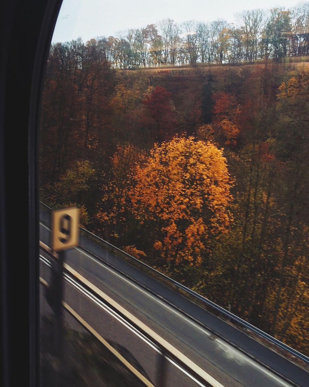 Train through Southern Germany to Ulm
