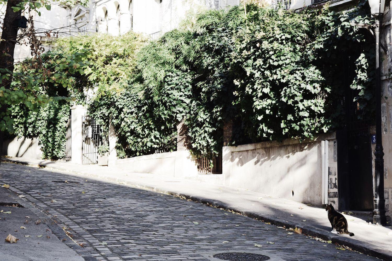 Rue Frochot