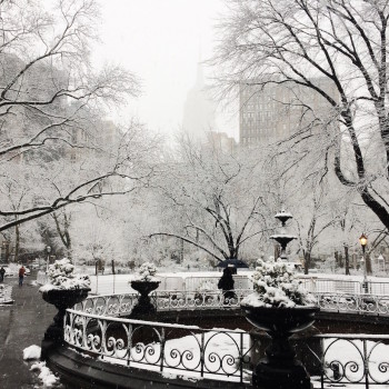 Snow in Madison Square Park