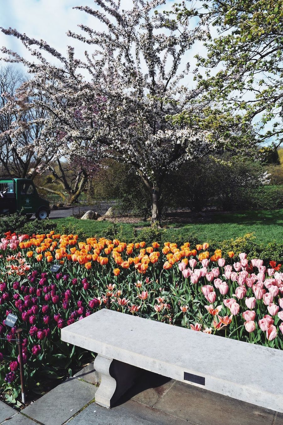 Brooklyn Botanic Garden Bench