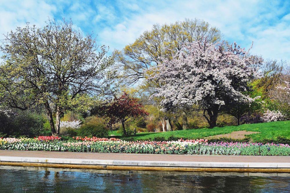 Brooklyn Botanic Lily Pool Terrace
