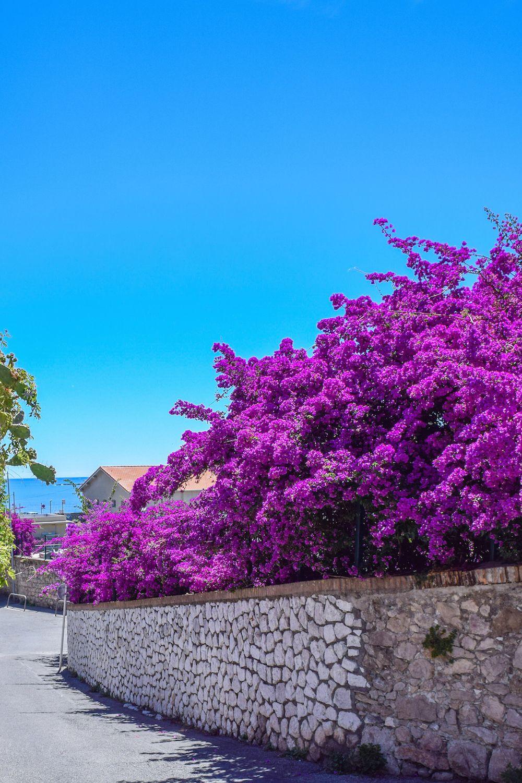 Rue du Haut Castelet, Antibes, France