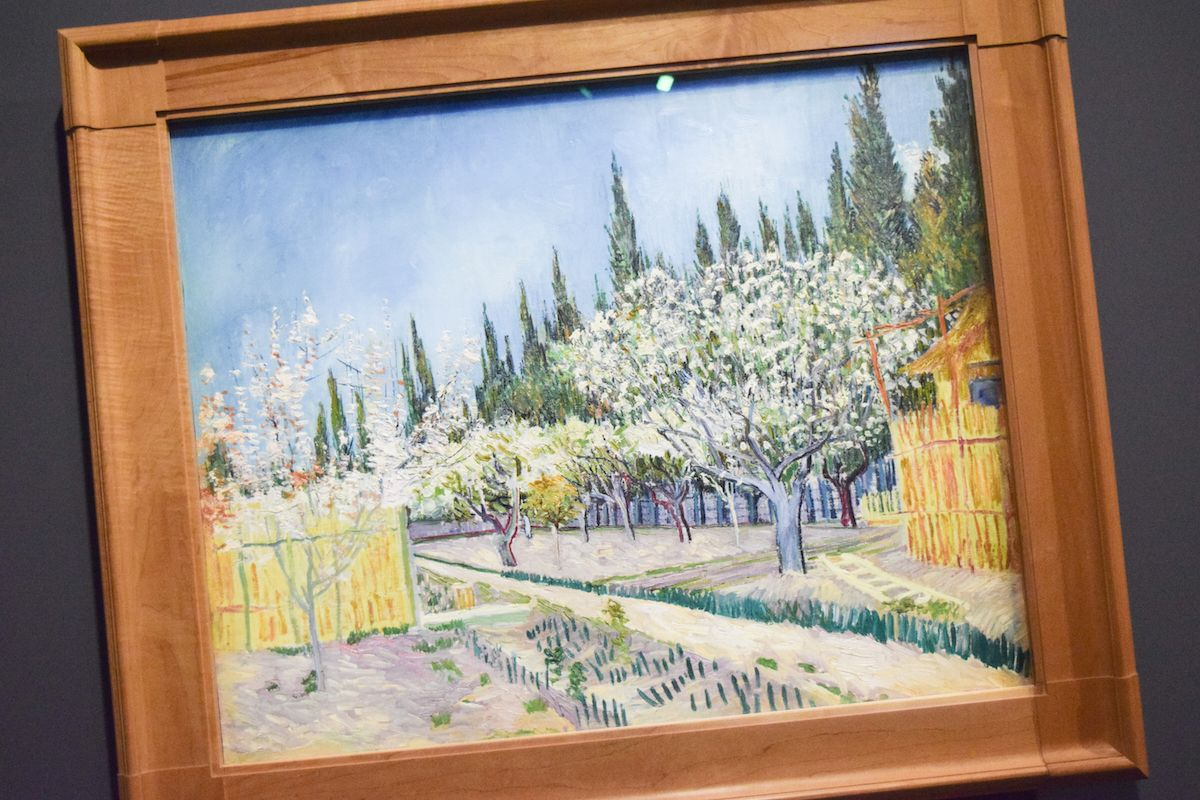 Fondation Vincent Van Gogh Arles - Orchard Bordered by Cypresses