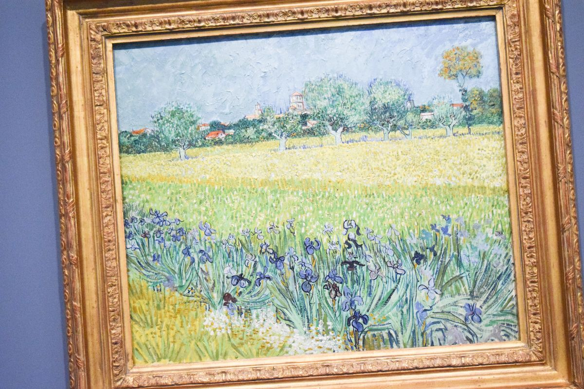 Fondation Vincent Van Gogh Arles - Field with Irises near Arles