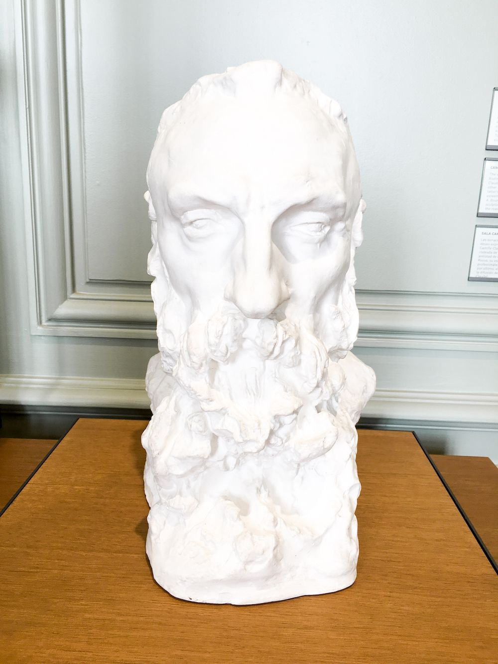 Bearded man sculpture at Musée Rodin