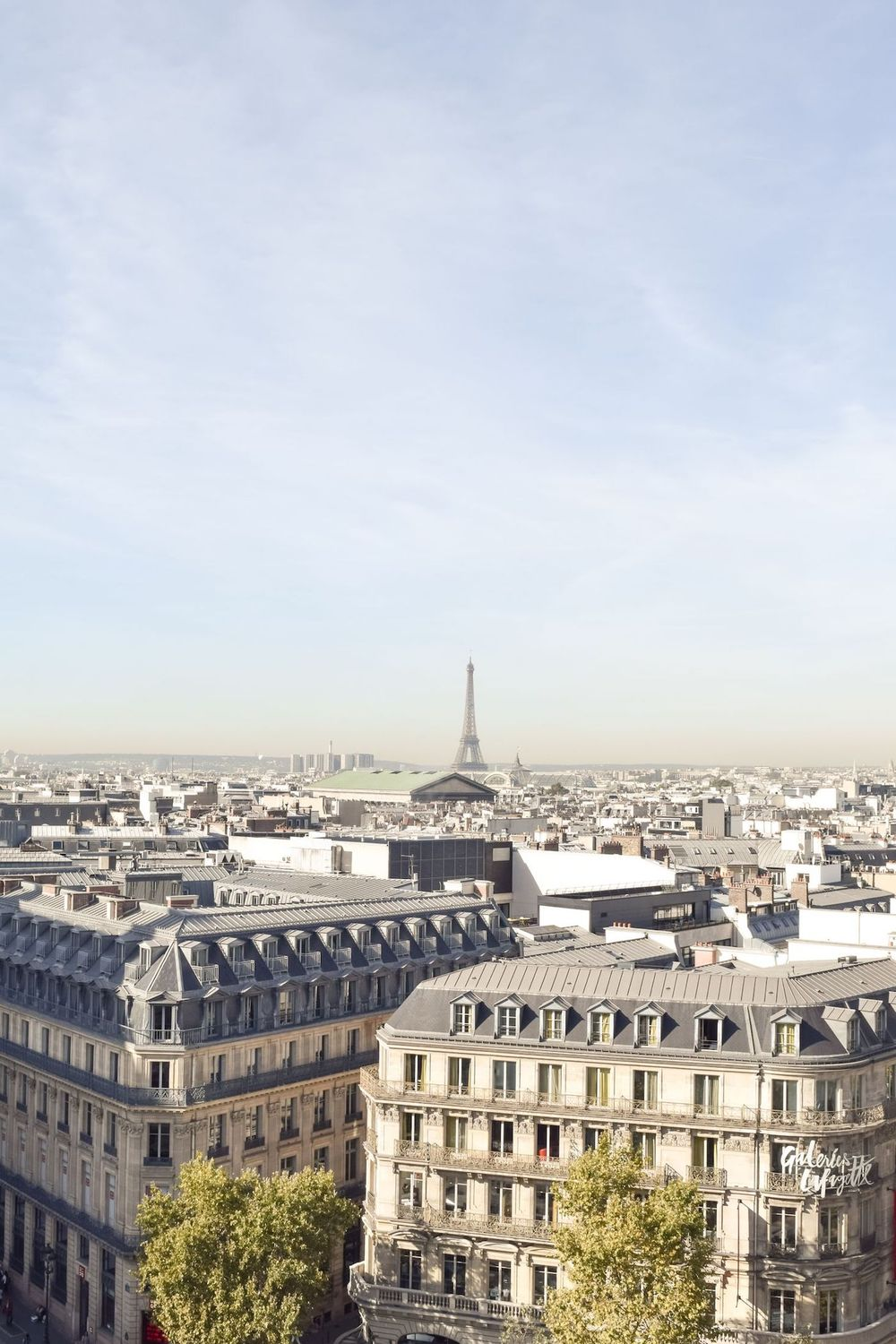 Galeries Lafayette Rooftop View of Eiffel Tower, Panoramic View of Paris Rooftops!