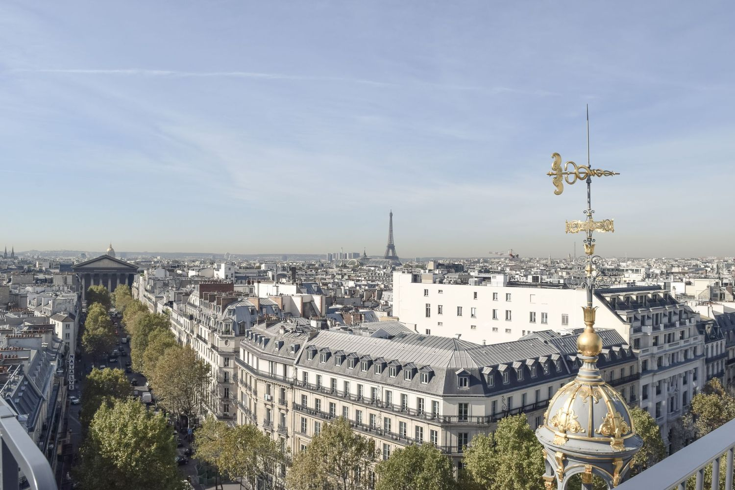 Le Printemps Department Store Rooftop View in Paris