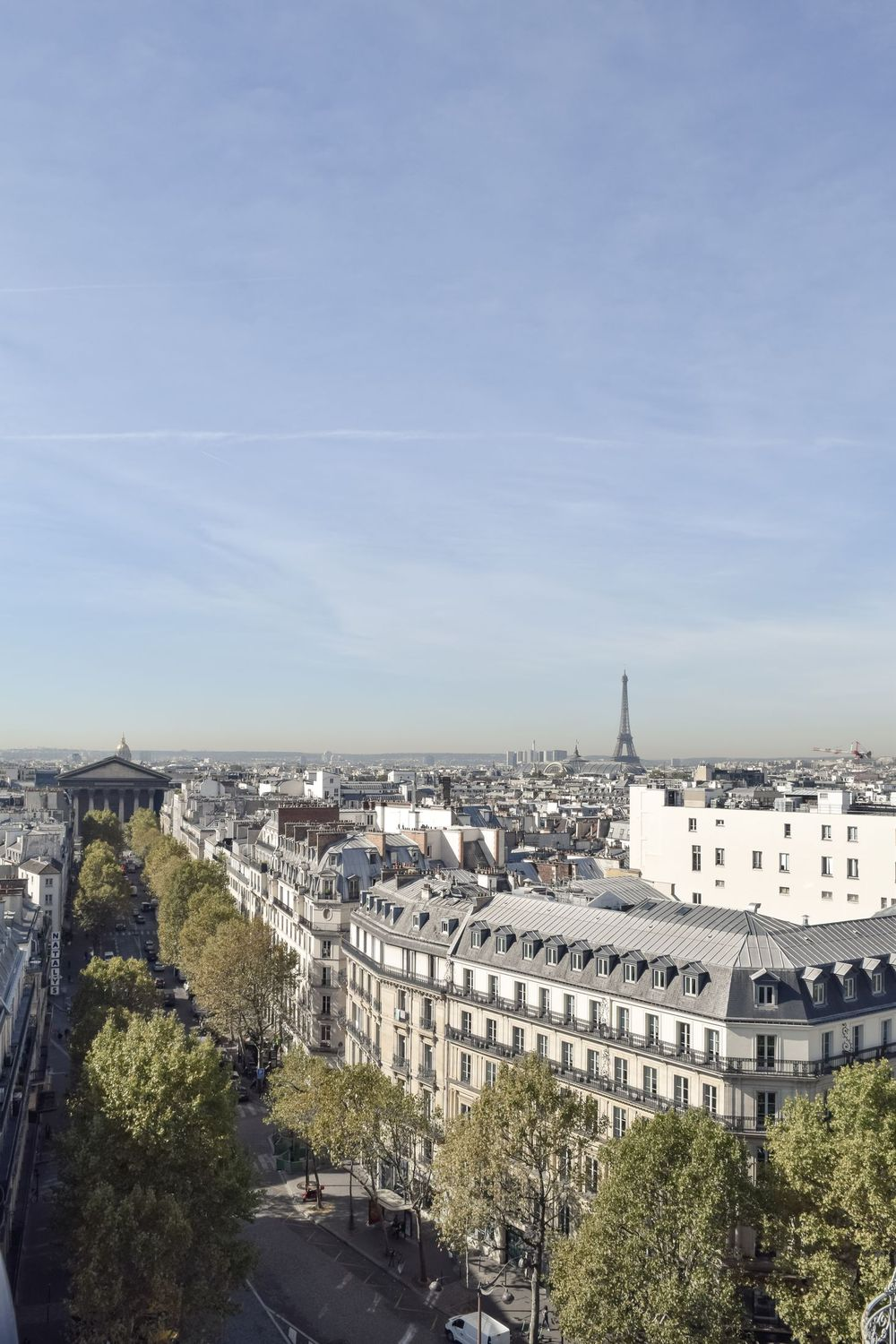Best Views in Paris? Le Printemps Paris, Where you can see the Eiffel Tower!