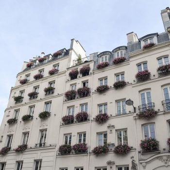 Flowers in the windows of Carrefour De L'Odéon, Paris