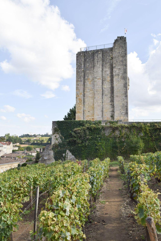 Chateau Du Roy, Saint-Émilion, France