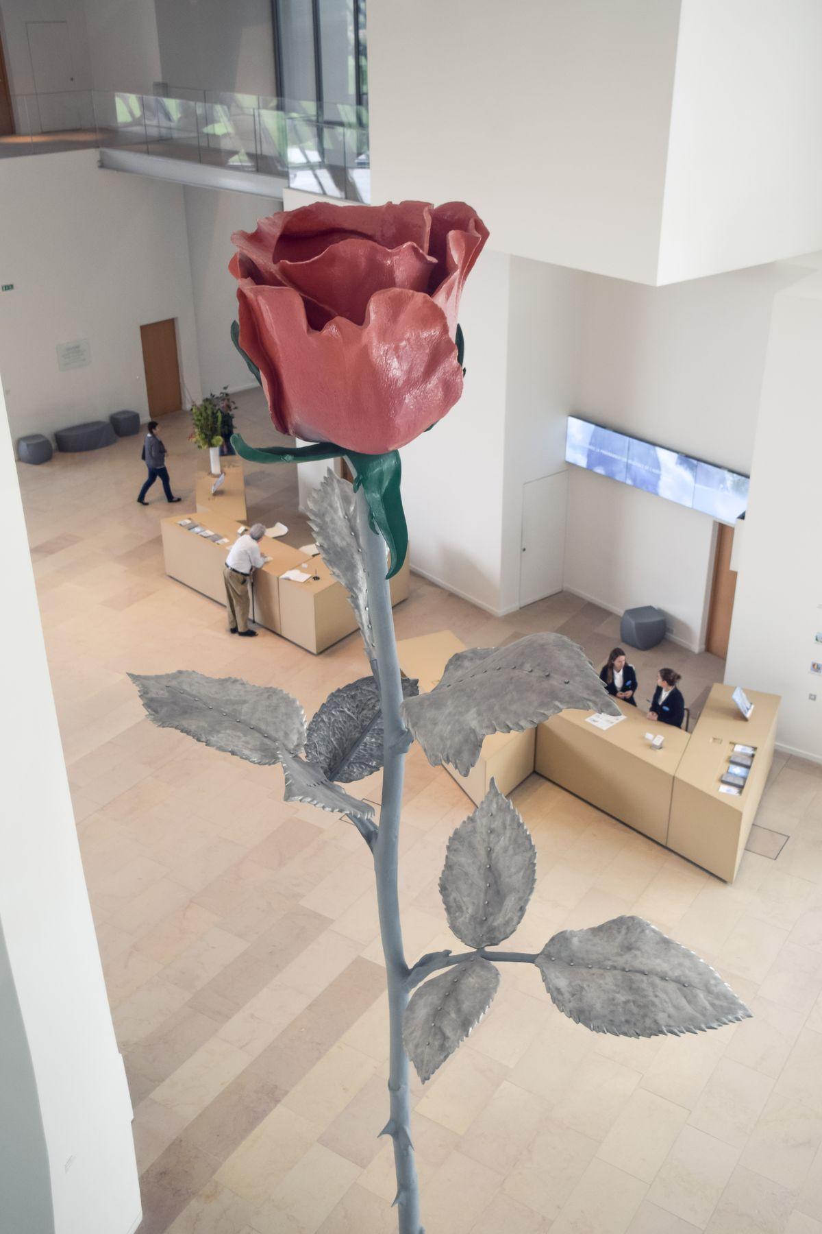 Rose, Fondation Louis Vuitton, Paris, France