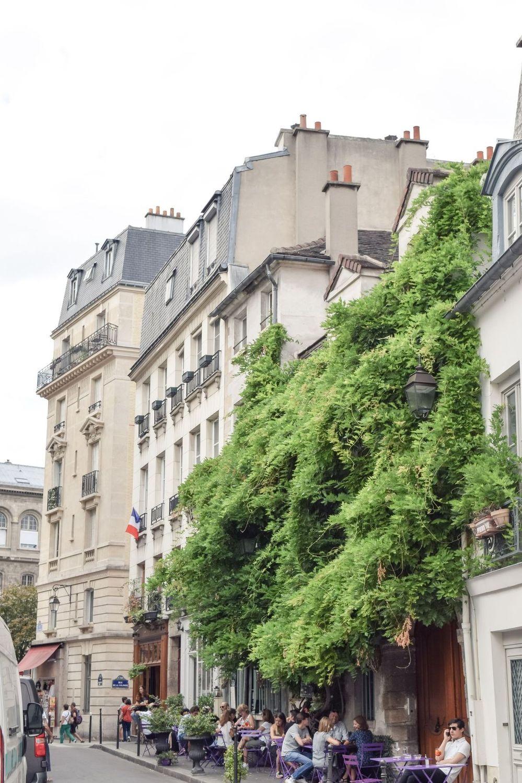 Vines covering Au Vieux Paris d'Arcole, Île de la Cité