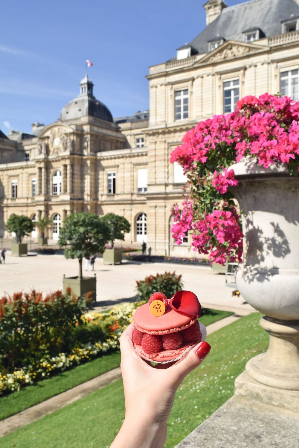 What to do and see in Saint-Germain-des-Prés: A Guide to the 6th Arrondissement of Paris, Jardin du Luxembourg