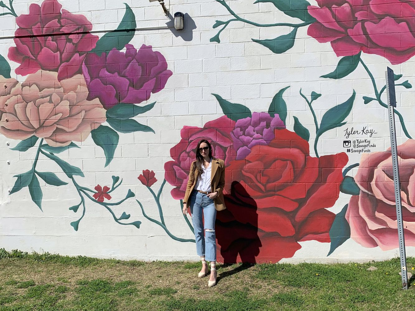 Savage Finds Rose Wall Mural in Waco, Texas - Waco City Guide