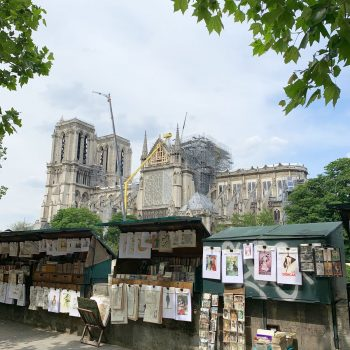 Repairs underway on the Notre Dame in Paris, May 2019