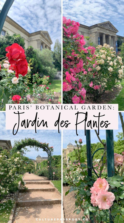 Jardin Des Plantes, Paris' Botanical Garden