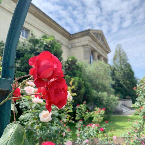 Jardin des Plantes | Paris' Botanical Garden