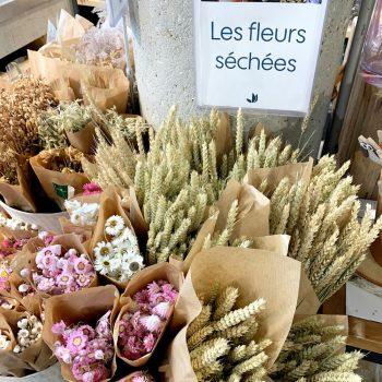 Truffaut Jardinerie - Dried Flowers In Paris